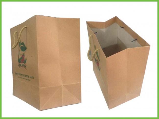 Mẫu túi giấy tái chế kraft 02