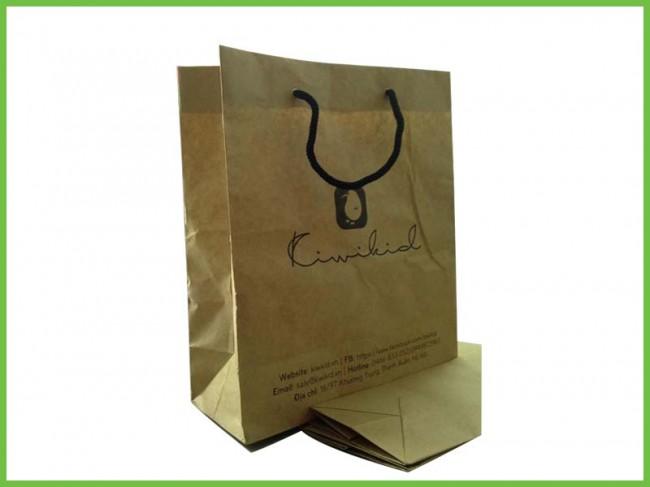 Mẫu túi giấy tái chế kraft 08